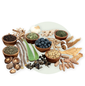 Superfoods and special support, adaptogens